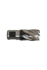 Evolution Power Tools Steel Line EVOLUTION FRAISE À TRÉPANER COURTE - 19 MM