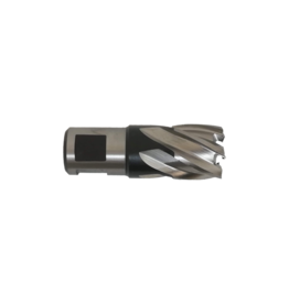 Evolution Power Tools Steel Line Kernfrees Kort - 19 MM