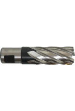 Evolution Power Tools Steel Line EVOLUTION FRAISE À TRÉPANER LONGUE - 12 MM