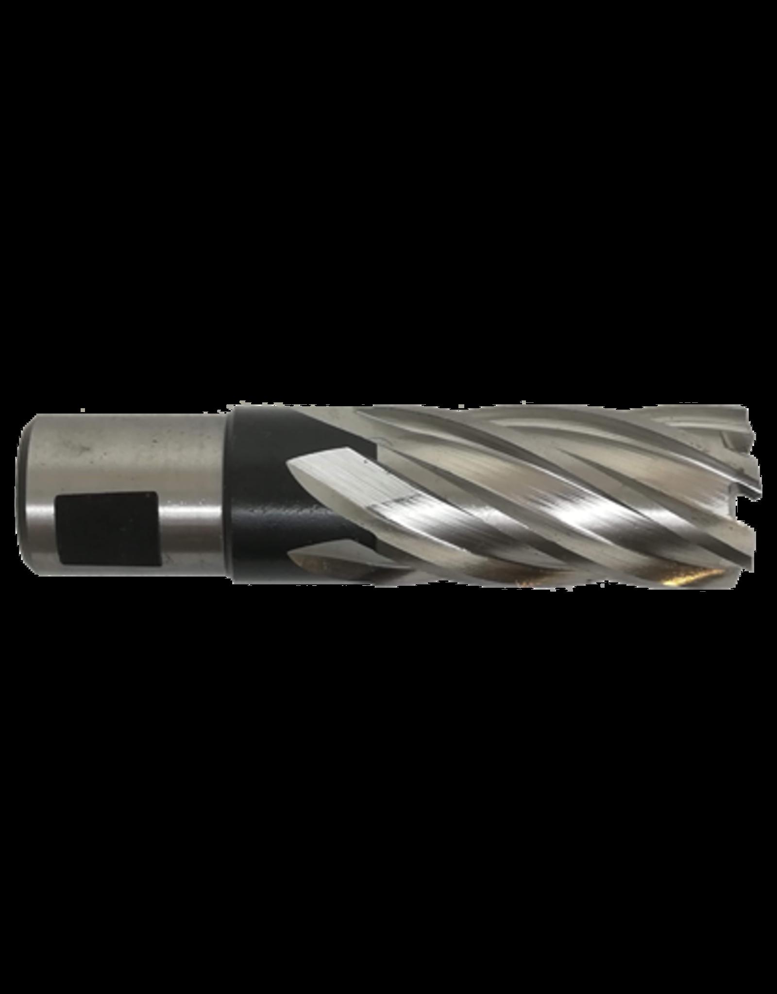 Evolution Power Tools Steel Line EVOLUTION LANGE HSS KERNFREES - 19 MM