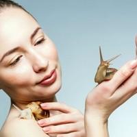 Interessante Hautpflege-Inhaltsstoffe aus Korea