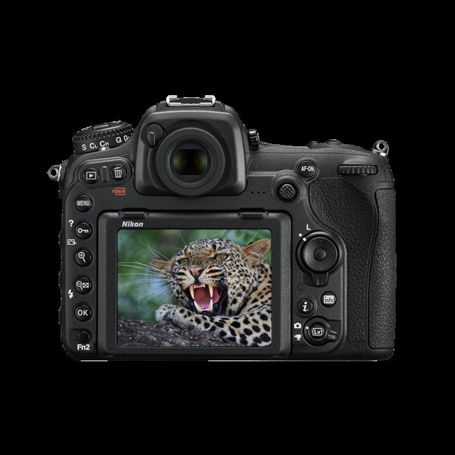 Nikon D500 Body - Nikon Schweiz Partner - CH Produkt
