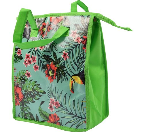 Discountershop Fresh & Cold koeltas - koel tas  strand  Koelbox   dames 8 liter polyetheen Groen