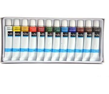 Acryl Paint Acrylverf set 12tubes 12 ml - sterk gepigmenteerd op waterbasis | acrylverf voor acrylschilderkunst | acrylverf voor stenen | Gifvrij | Waterverfkleuren