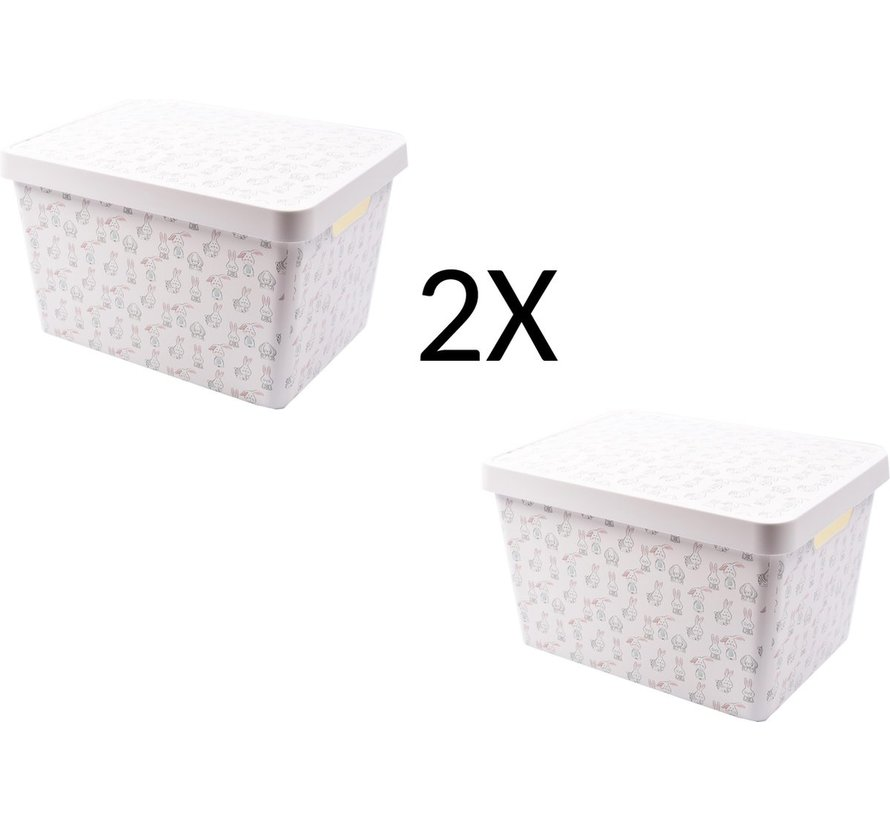 2x Opbergdoos 36 cm x 26 cm x 22 cm- 2 stuks 17 L + 17 L met deksel - Opbergdoos