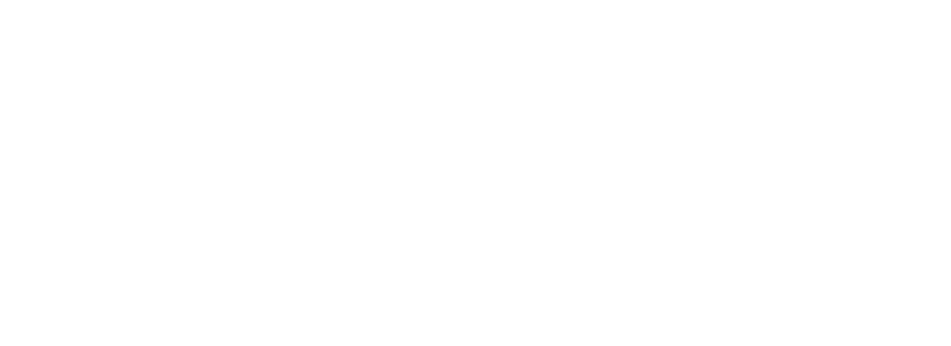 Life On 2 Wheels Bikes & Tours