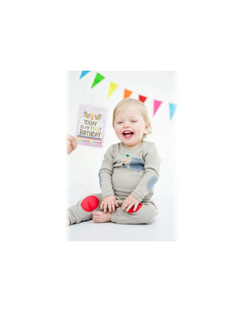 Milestone Baby Cards Baby Cards - engels