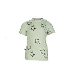 nOeser Teske T-shirt turtle