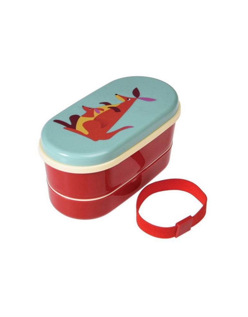 Rex international Bento box kangaroo