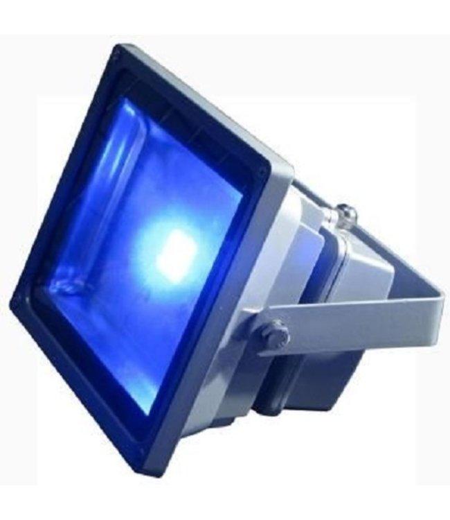 LED Bouwlamp Blauw- 50 Watt