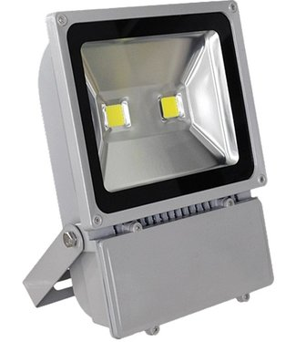 LED Bouwlamp Puur Wit - 100 Watt