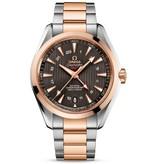 Omega Horloge Seamaster 43mm Aqua Terra 150M GMT 231.20.43.22.06.003