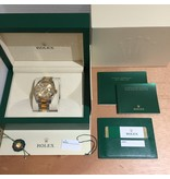 Rolex Horloge Oyster Perpetual Professional Sky-Dweller 326933OCC