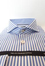 Olymp caw 8536 Blue Stripe