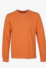 Colorful Standard Sweater burned orange