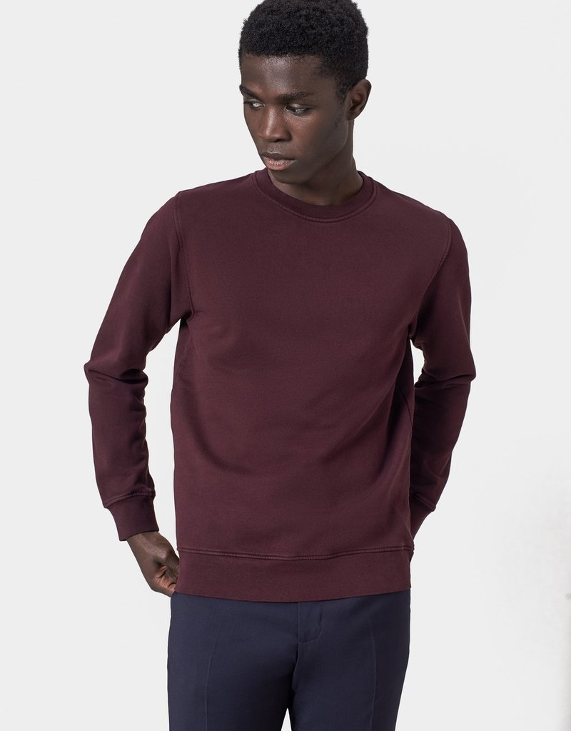 Colorful Standard Sweater oxblood red