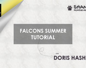 Paracord Falcons Summer