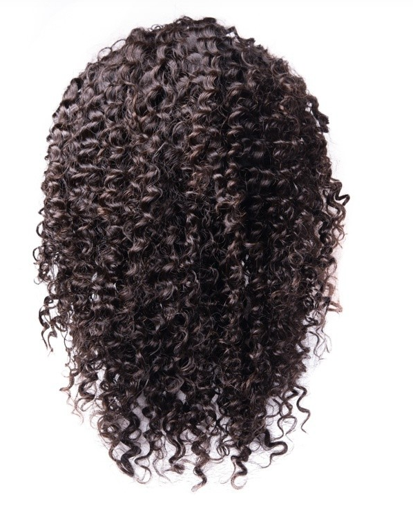 ArcticFox Virgin Full Lace Wig - Jerry Curl
