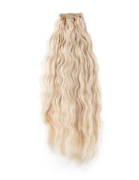 SilverFox Brazilian Curly - Blond