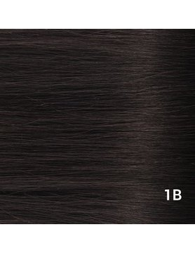 SilverFox Tape Extensions Straight - #1b  Natural Black