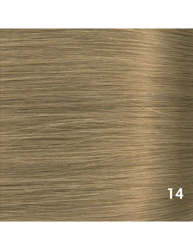 SilverFox Wax Extensions Steil  #14 Warm Ash Blonde