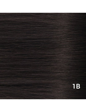 SilverFox Microring Loopring  Extensions - Steil -  #1b Natural Black
