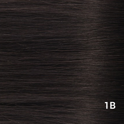 SilverFox Machine Made V-Part Clip-in #1b Natural Black