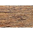 Wandkurk tegel - Expression- 60 x 30 cm - 4mm dik - PER M2