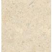 Gelakte plak kurkvloer - Champagner White - 60 x 30 cm. - per m²