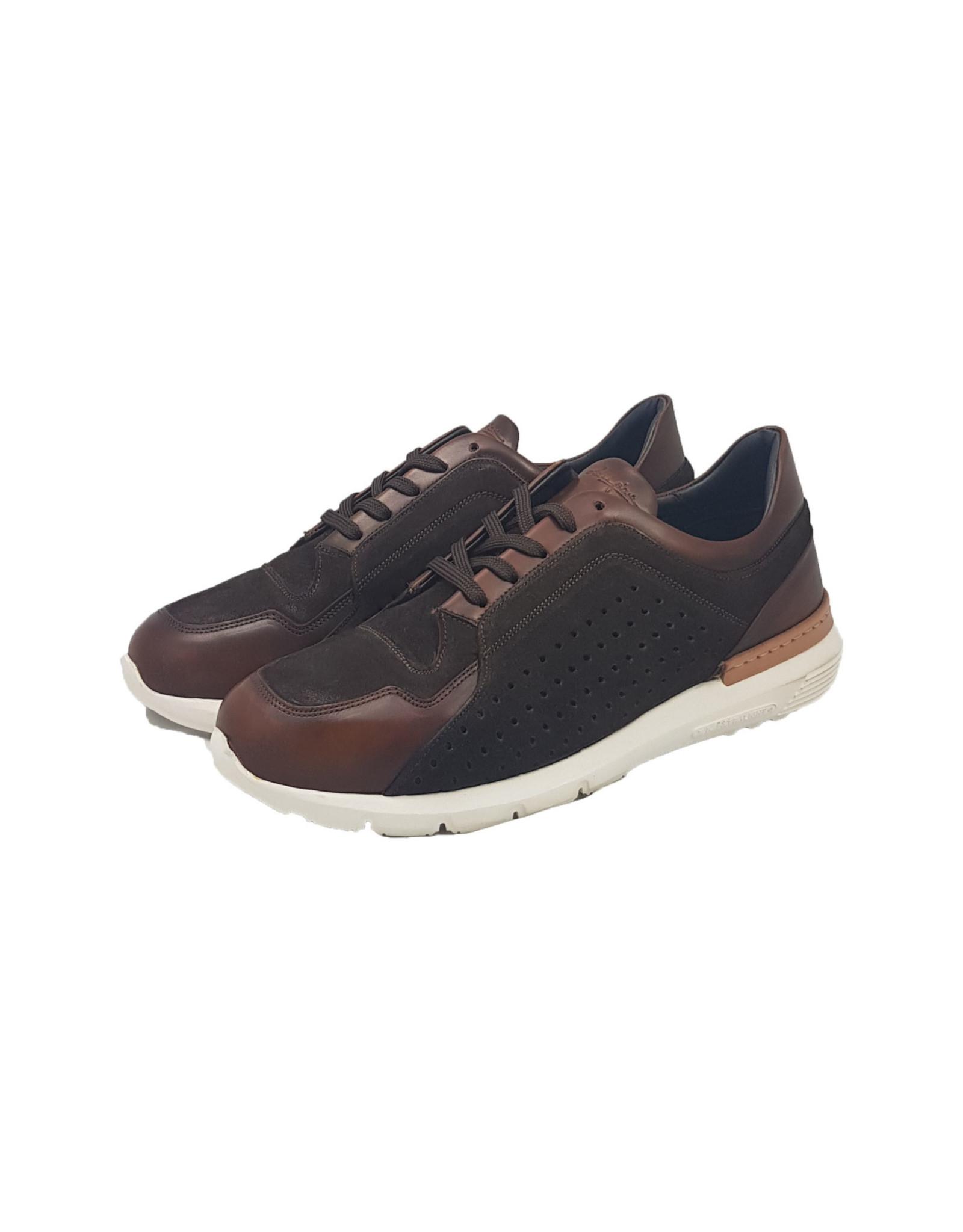 Zampiere Zampiere schoenen Delave Marrone M:5399