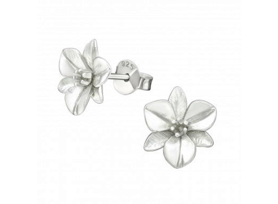 Zilveren oorstekers bloem