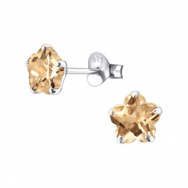 Silver ear studs with zirconia stone-1