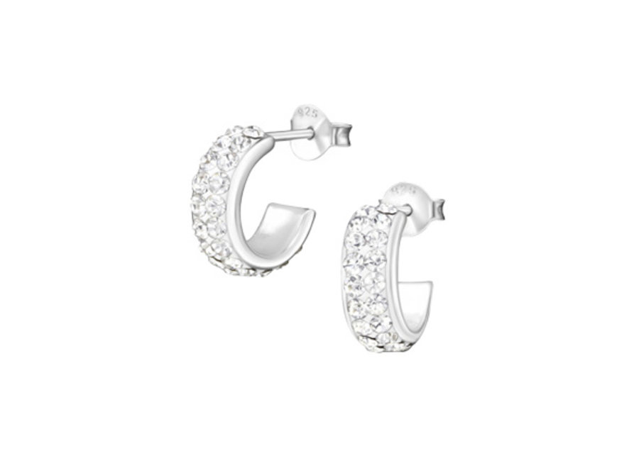 Zilveren oorstekers kristal