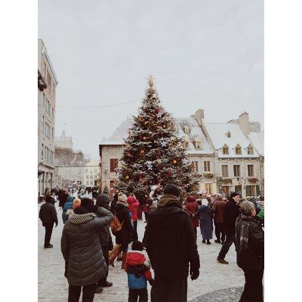 Tweedekans Kerstbomen