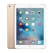 Apple Apple iPad Air 2 Goud 16GB Wifi Only - A-Grade