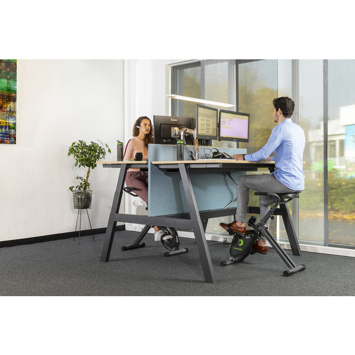 Deskbike - Exercise bike Cardio Fit D20