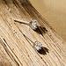 Parte di Me Cento Luci Mila 925 sterling zilveren oorknoppen