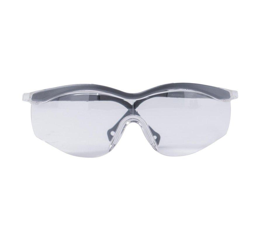 Ecosafe Veiligheidsbril, 1 stuk