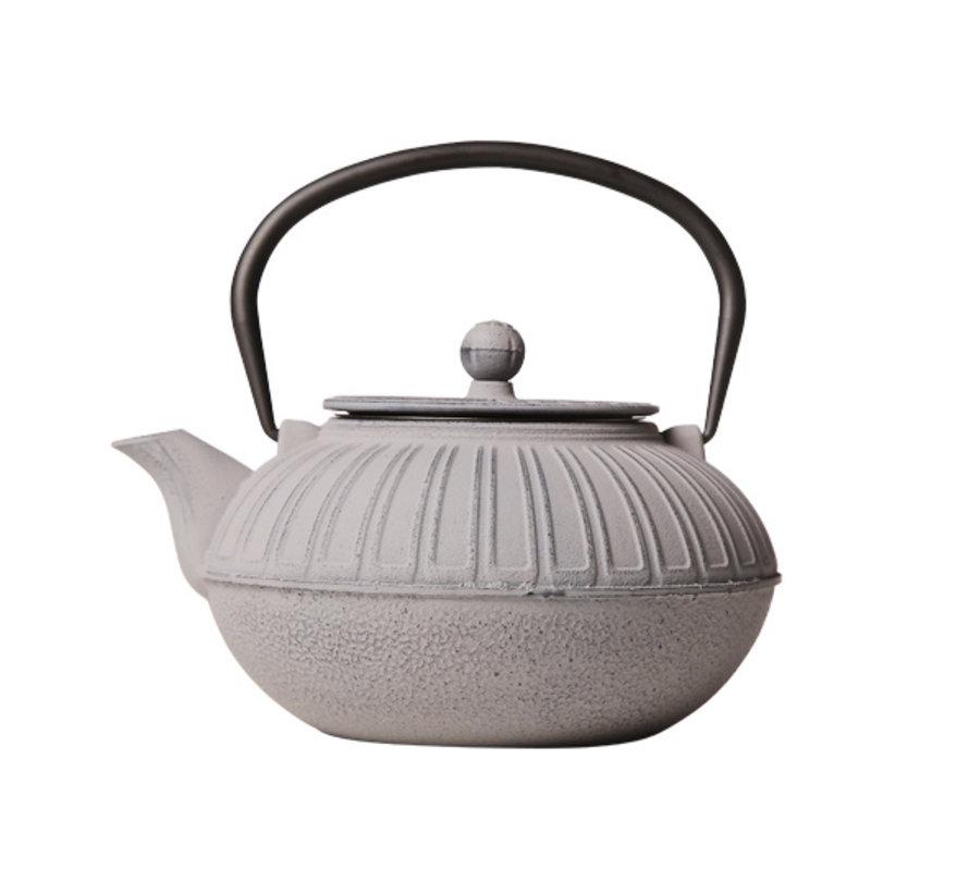 Cosy & Trendy Iwaki theepot grijs gietijzer 1500ml met filter, 1 stuk
