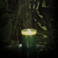 My Flame Lifestyle SOJAKAARS 410 GR. - WORLD WONDERS - ANGEL FALLS