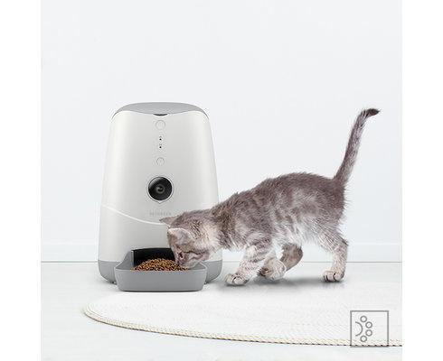 Slimme voerautomaat voor katten