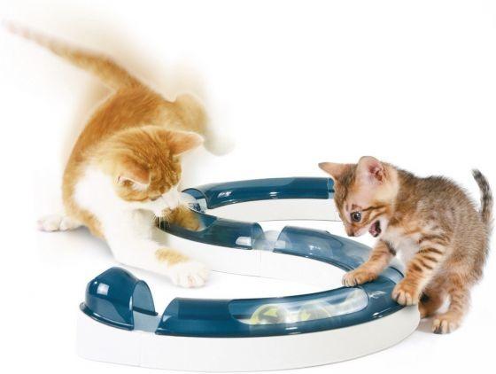 Speelbaan met bal. Kat en kitten spelen met deze baan.