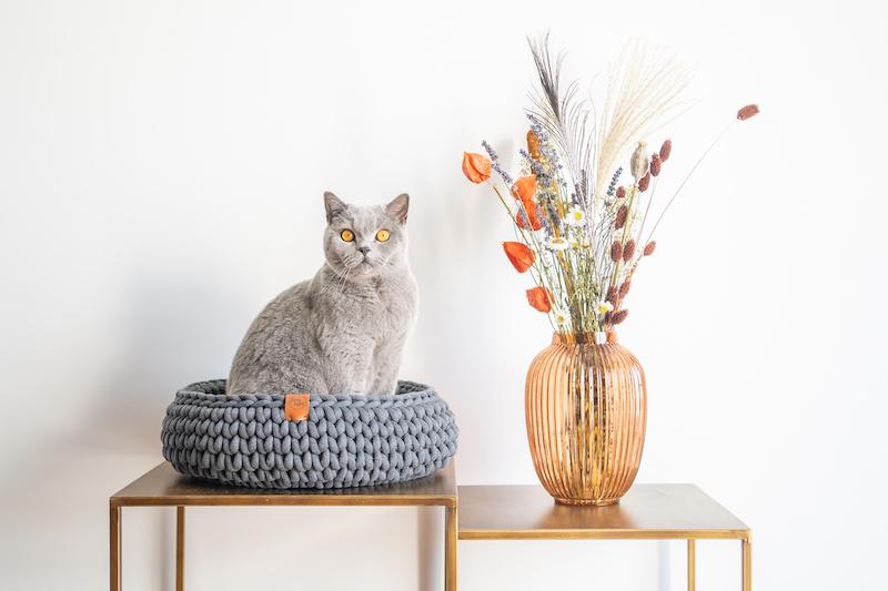 Een unieke grijze handgemaakte kattenmand van Sunny Baskets