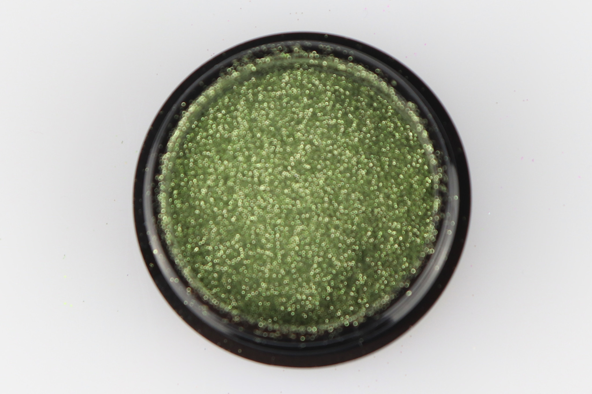 88 | Micro Glitter - Green-1