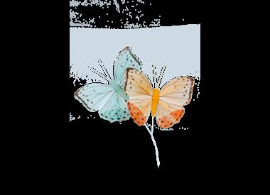 Bloemen & deco