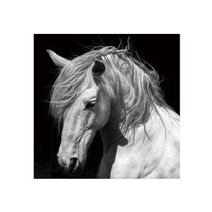 Schilderij glas paard