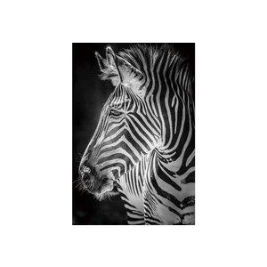Schilderij glas zebra
