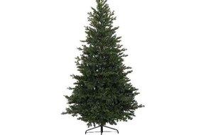 Kerstboom 240cm Groen