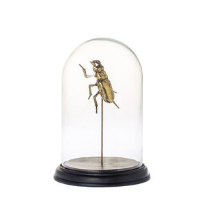 Stolp Goud Insect