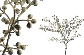 PTMD Berry Plant Grey Grijs/Groen